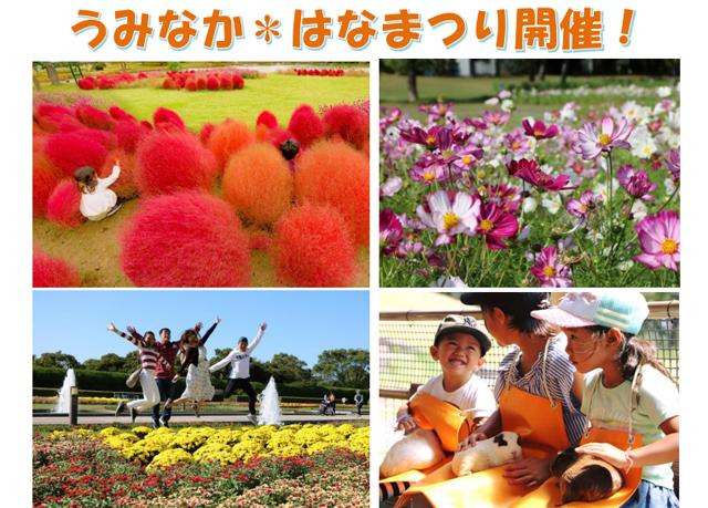 海の中道海浜公園「うみなか はなまつり2019」開催!