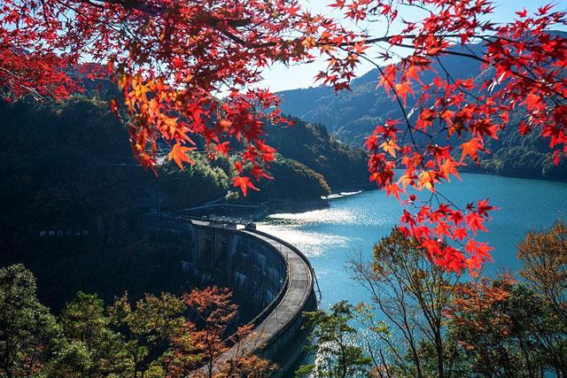九電が宮崎県椎葉村の上椎葉ダムで初の「観光放流」実施へ