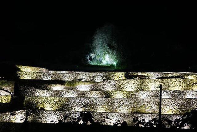 東峰村「竹の棚田ライトアップ 秋あかり2019」棚田キャンプも初開催