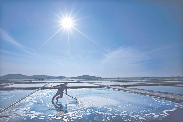 糸島に塩と発酵の店「かもすてらす」オープン!微生物たちの醸すちからで身体の中が光りかがやく