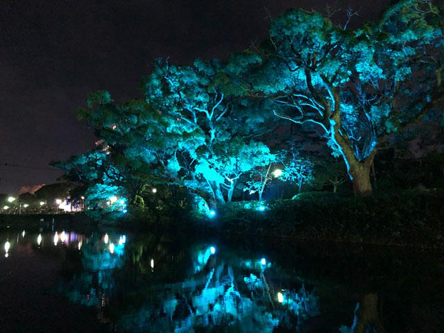 ネイキッド×佐賀県「佐賀城公園北側のお濠」でライトアップ演出展開