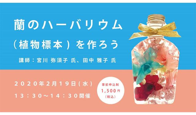 福岡市科学館で「蘭のハーバリウム(植物標本)を作ろう」講座開催へ