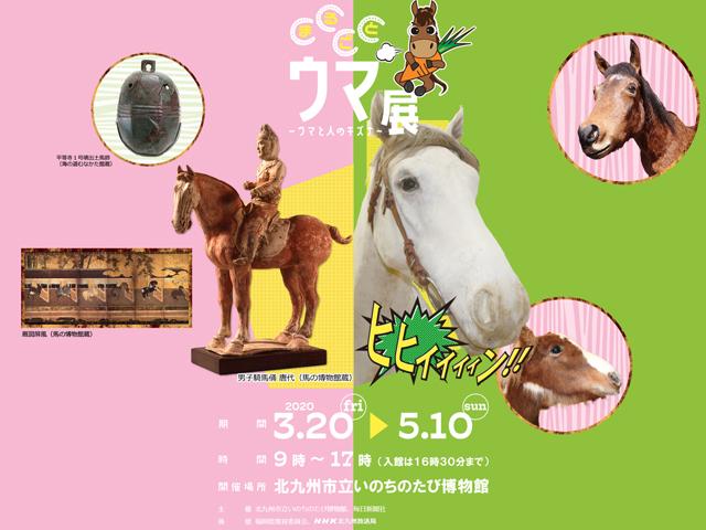 【開催延期】いのちのたび博物館で馬を題材とした「まるごとウマ展」開催へ!