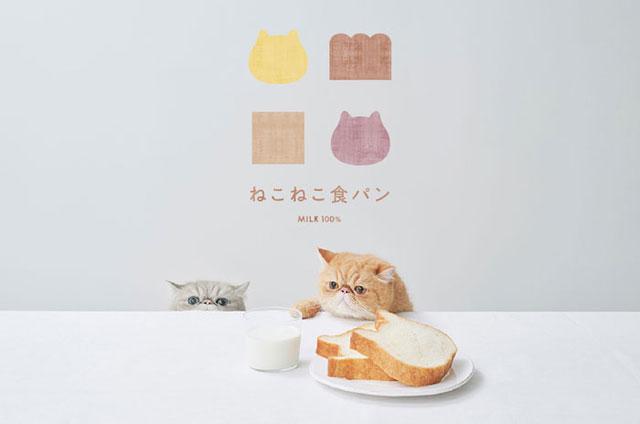 天神エリア初登場「ねこねこ食パン」福岡三越に催事出店へ