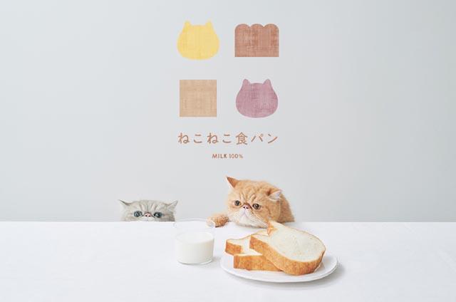 ねこねこ食パンが「オンライン販売」を開始