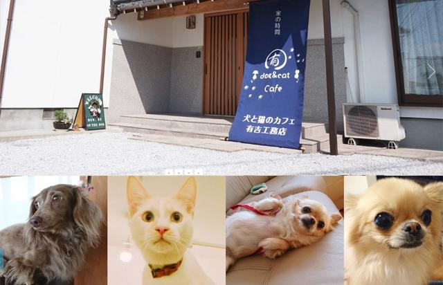 飯塚市に「犬と猫のカフェ 有吉工務店」オープン