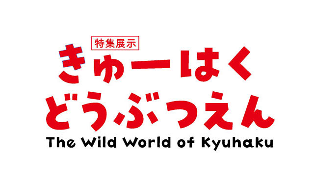 九州国立博物館、6月2日(火)より開館