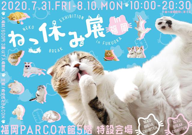 福岡パルコで「ねこ休み展」4年ぶりの福岡開催へ