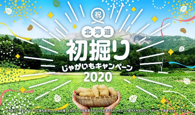 カルビーから北海道で初掘りされたばかりのジャガイモを使用したポテチ登場