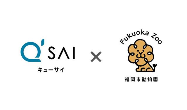 キューサイが副賞提供、福岡市動物園「ミナミシロサイの名前をみんなで決めよう」