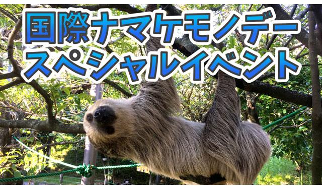 大牟田市動物園が「国際ナマケモノデー」スペシャルイベント開催