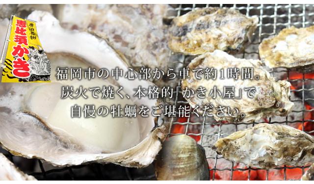 炭火で自慢の牡蠣を堪能!「唐泊恵比須かき小屋」が営業開始へ