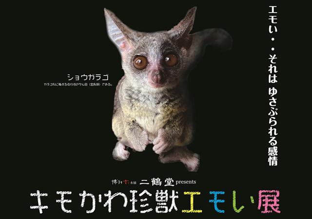 エモい珍獣たちが大集合!「キモかわ珍獣エモい展」博多で開催へ!