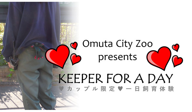 【募集終了】大牟田市動物園が「♥カップル限定♥ 一日飼育員体験」開催