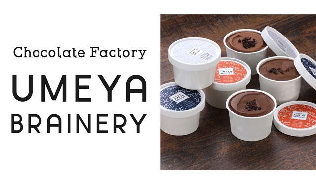 宗像市のチョコレート専門店から「カカオ豆の産地別によるチョコレートアイス」3種登場