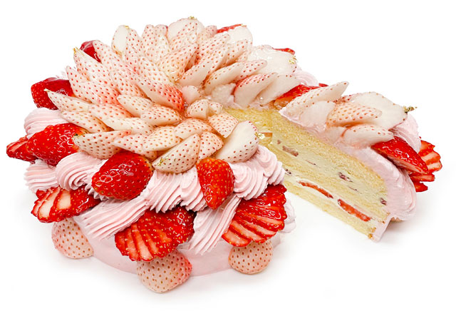 カフェコムサ、2月は「白いちご」と「おすすめのいちご」使用のショートケーキ発売へ