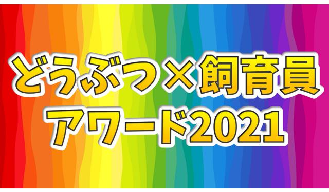 大牟田市動物園で毎年恒例の「どうぶつ×飼育員アワード」今年も開催