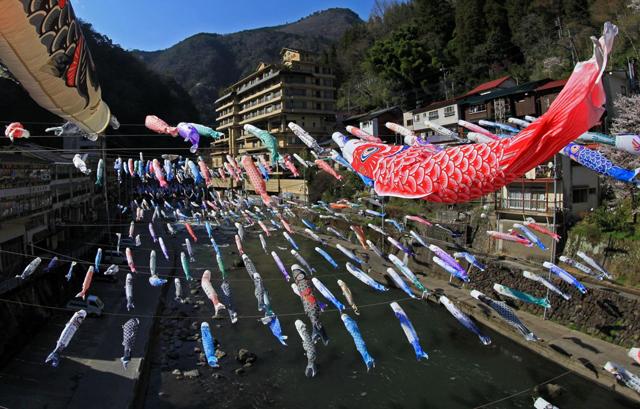 杖立温泉で「鯉のぼりまつり」開催中、ライトアップも実施