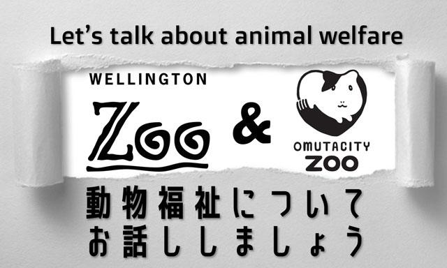 大牟田市動物園×ニュージーランドのウェリントン動物園、動物福祉に関する取り組みついてライブ開催へ