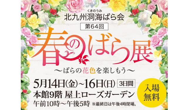 北九州洞海ばら会「春のばら展 〜ばらの花色を楽しもう〜」開催