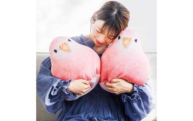 フェリシモ YOU+MORE!×小鳥部「もっちり愛らしいアキクサインコクッション」登場