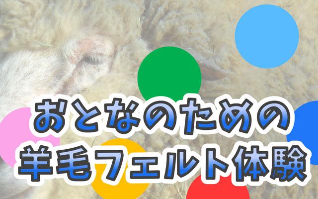 大牟田市動物園が「おとなのための羊毛フェルト」参加者募集中