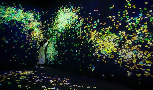 チームラボフォレスト福岡が夏の景色に「季節限定の夏の作品群」公開へ