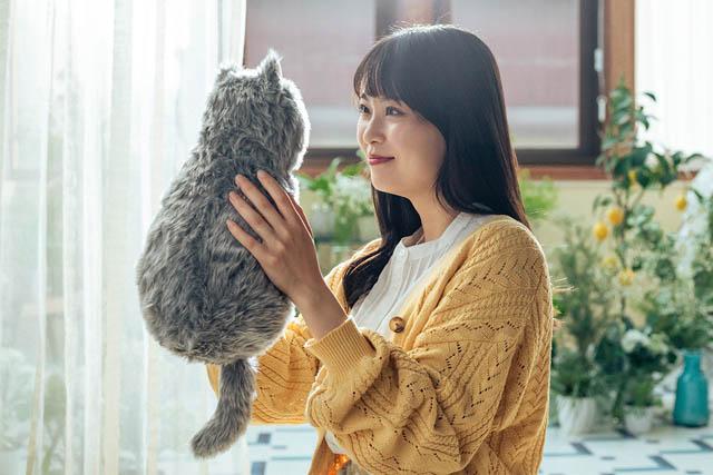 猫ちゃんを飼えないひとへ「ほぼ猫のようなネコ型クッション」一般販売開始へ