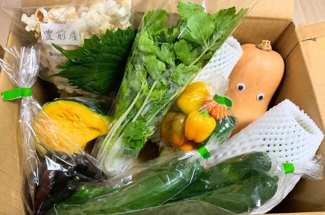 """旬の食材定期便がお得♪マレブルの""""さぶすくりぷしょん""""で九州を食べよう!"""